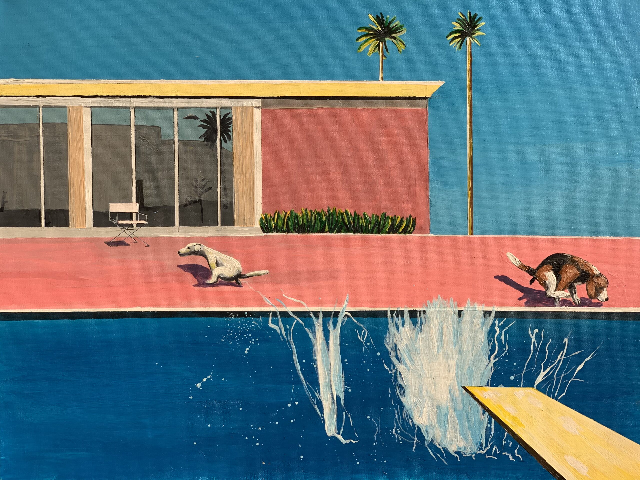 A Bigger Splash with Dog Relief